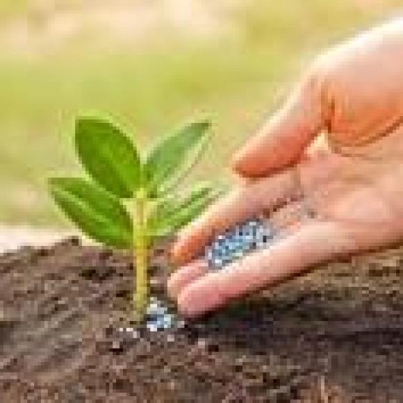 Profile picture of We have designed a Mobile Fertilizer Plant - storyID fnf4031